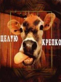 Василий Смирнов, 8 декабря 1985, Макеевка, id82320256