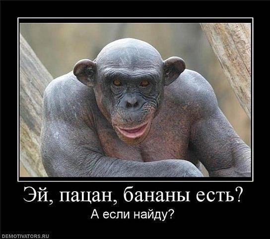 http://cs10023.userapi.com/u96203494/-14/x_f94f4a71.jpg