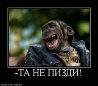 Александр Boss, 25 ноября , Арти, id109600391