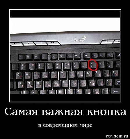 x_82502624.jpg