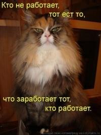 Любовь Файзулина, 23 июня , Краснотурьинск, id91048079