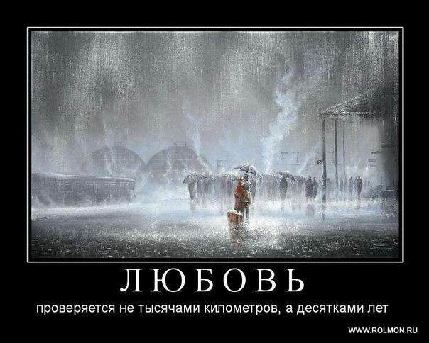 http://cs10032.vk.me/u50375882/153267578/x_34604c0b.jpg