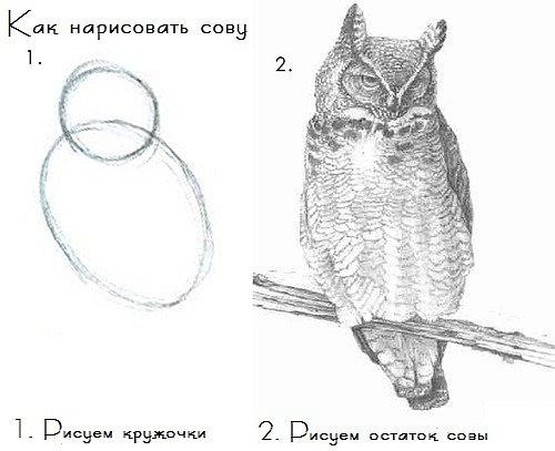 http://cs10033.vkontakte.ru/u5560276/115951551/x_95d5c2e6.jpg