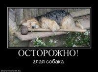 Nokac Hokac, 4 февраля , Новосибирск, id87966756