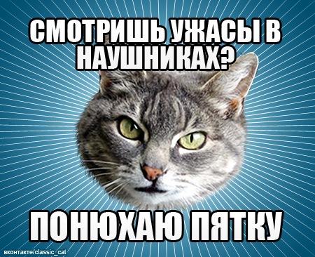 http://cs10036.vkontakte.ru/u675869/140082175/x_174476db.jpg