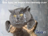 Яков Опарыш, 12 декабря , Новосибирск, id127950122