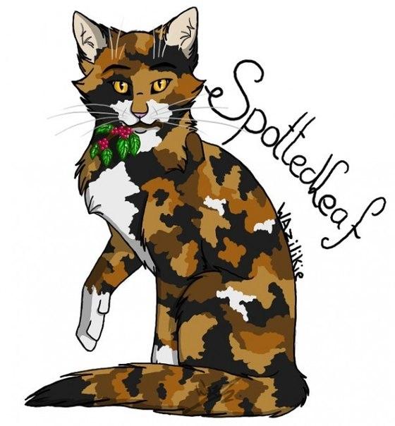 Аватарки с коты воители