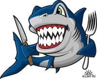 Shark Malkov, 8 сентября , Самара, id169056491