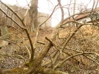 Роман-Снайпер-Дракон Стручинський-Колі-Мамаду-Брат, 20 февраля 1996, Можайск, id160961168