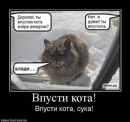 http://cs10048.vkontakte.ru/u33414013/106734366/x_f7567460.jpg