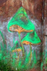 """Схемы вышивки  """"грибы наркотики природа растения """".  Автор схемы. eiforiya."""