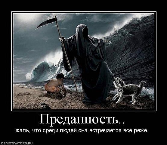 http://cs10056.vk.me/u79106775/120359248/x_76d207e6.jpg