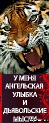 Maksim Krasilinikov, 9 мая , Ромны, id96203629