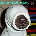 Артём Пантелеев, 28 сентября 1982, Пермь, id50716457