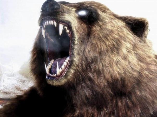 Злобная битва! Медведь против Алабая ...