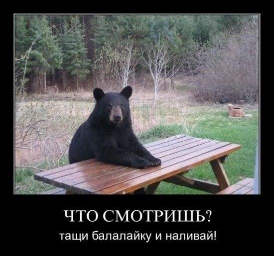 Того, Владимир сделать красивую рамку для текста исполненному благоговения Киппсу