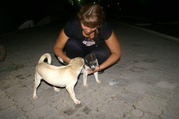 http://cs10090.vkontakte.ru/u2133049/114362137/x_af7f95ac.jpg