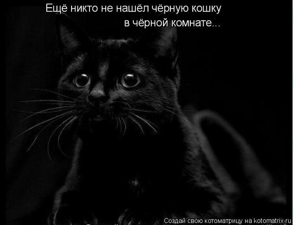 тёплой чугунной батарее спал маленький совершенно весь чёрный котёнок.