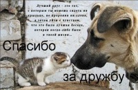 Маришка Ахматова, 4 января 1992, Самара, id144765461