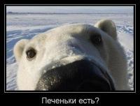 Миша Белый, 20 июня 1983, Балаково, id85743438
