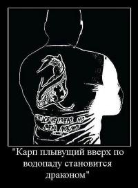 Максим Смирнов,