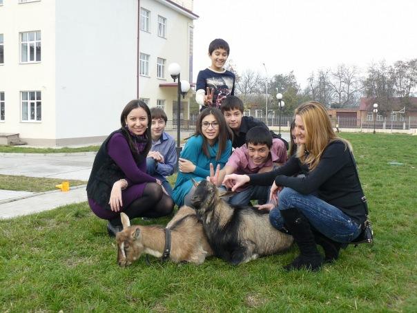 Недетский квартал и козлы