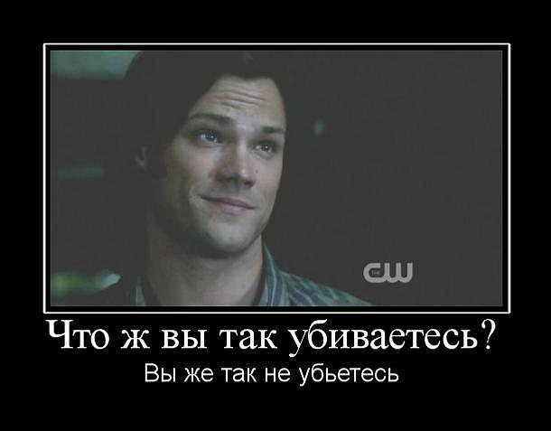 http://cs10114.vkontakte.ru/u21282148/146529978/y_5204d7ab.jpg