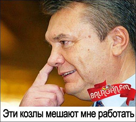 """У Кличко назвали Януковича постоянно бегающего к Путину – """"стыдом для всего мира"""": Где еще такое позорище было? - Цензор.НЕТ 5750"""