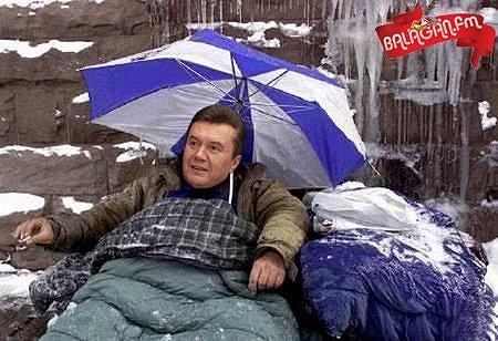 """У Кличко назвали Януковича постоянно бегающего к Путину – """"стыдом для всего мира"""": Где еще такое позорище было? - Цензор.НЕТ 7067"""