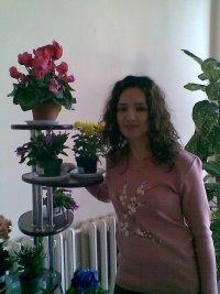 Narine Sarkisyan, Мегри