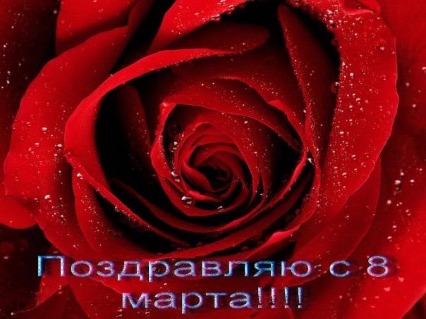 http://cs10115.userapi.com/u21547721/114686632/x_ac0a7e6b.jpg