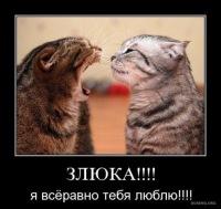 Светлана Сидорова