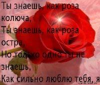 Даша Раковская, 19 ноября 1997, Тула, id63544135