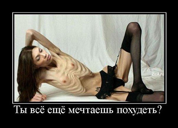 http://cs10121.vkontakte.ru/u39834351/105265877/x_db9171a6.jpg