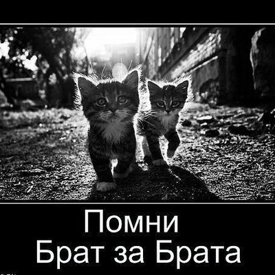 Вадим Мельник, 15 февраля , Новокузнецк, id108564847