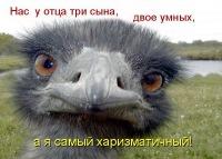 Дима Недобрейко, 3 мая 1984, Армавир, id119303041