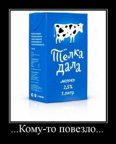 http://cs10129.vkontakte.ru/u20488269/102775929/x_9b622e67.jpg