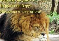 Олег Семенюта, 24 июля 1976, Одесса, id157101845