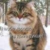 ВКонтакте Настя Иванова фотографии