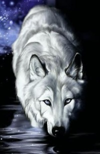 волки.оборотни картинки