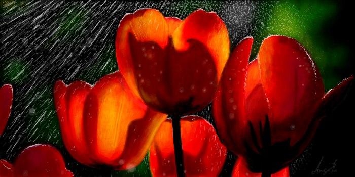 Живое граффити тюльпаны