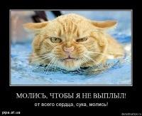 Даниил Алексеев, 19 ноября 1989, Екатеринбург, id162263207