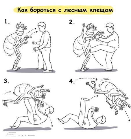 http://cs10160.vkontakte.ru/u4633577/x_4c4ef6ae.jpg