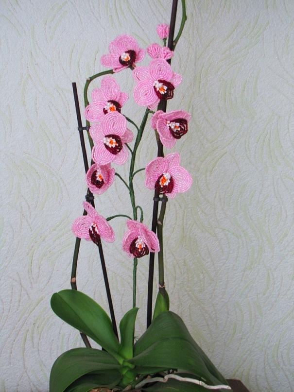 Белая орхидея из бисера. .