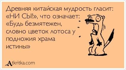 http://cs10168.userapi.com/u15977631/-6/x_1e60f4a4.jpg