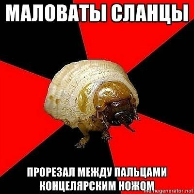 Подборка злой личинки