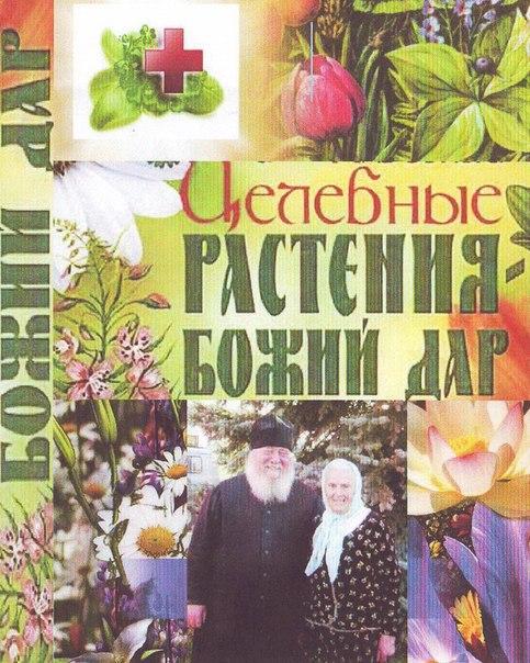 Купить книгу монастырская травница - sibpovoci
