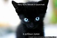 Ирина Михайловская, 5 марта , Харьков, id7414653