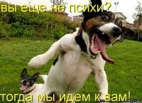 Александр Алексеев, 23 апреля , Обнинск, id154315336