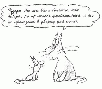 http://cs10173.vkontakte.ru/u5745805/121729496/x_c636e07a.jpg